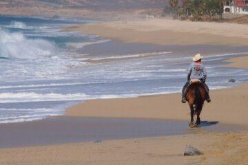 Horse ride tour in cabo san lucas