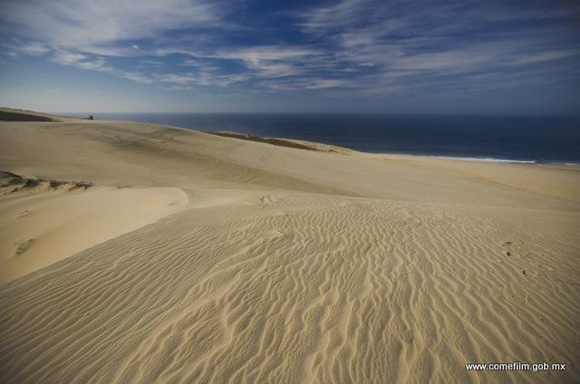 Cabo San lucas Desert